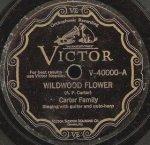 carter_family-wildwood_flower_s